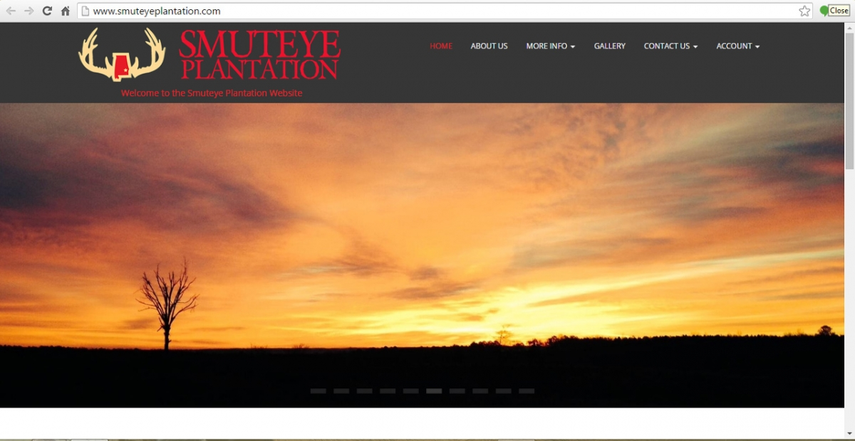 Banks, Alabama Hunting Web Design
