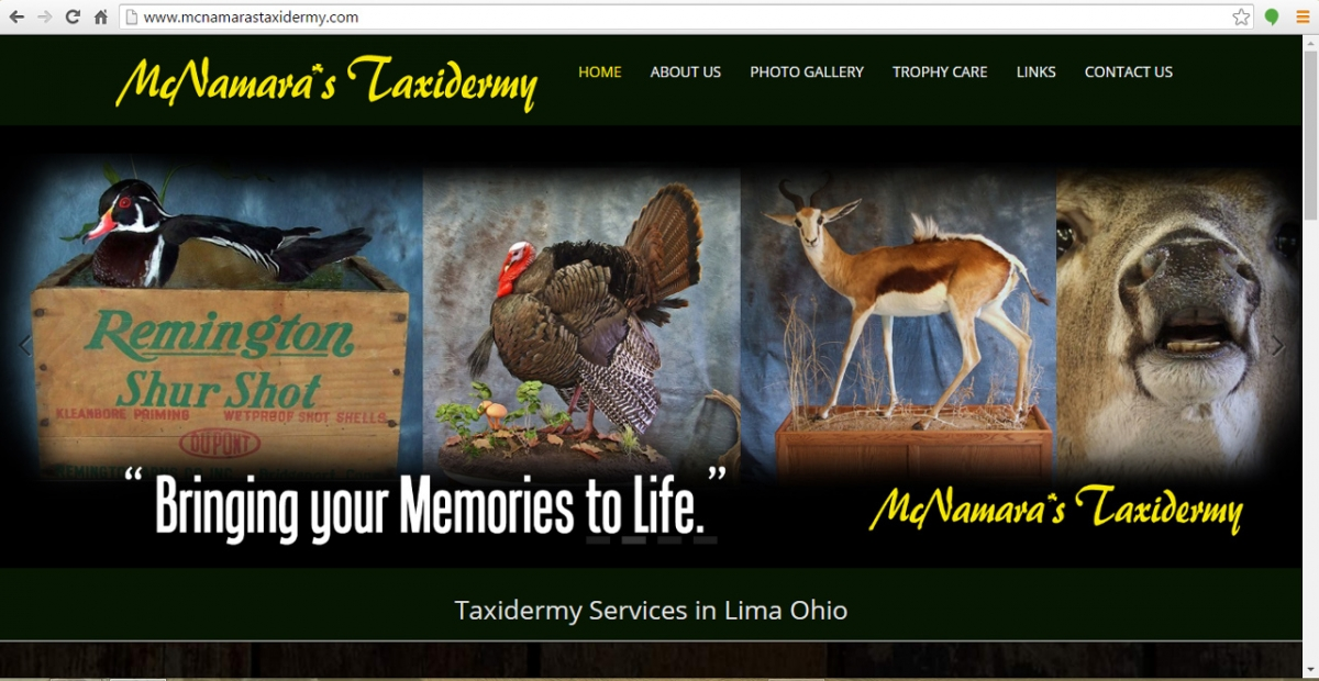 Lima, Ohio Taxidermy Web Design