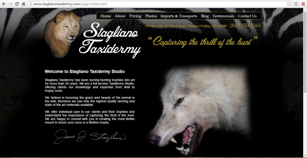 Walker Valley, New York Taxidermy Web Design