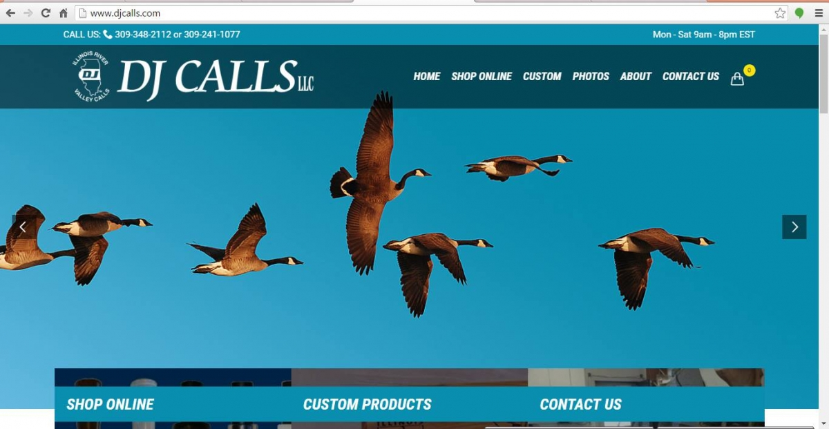 Pekin, Illinois Website Design