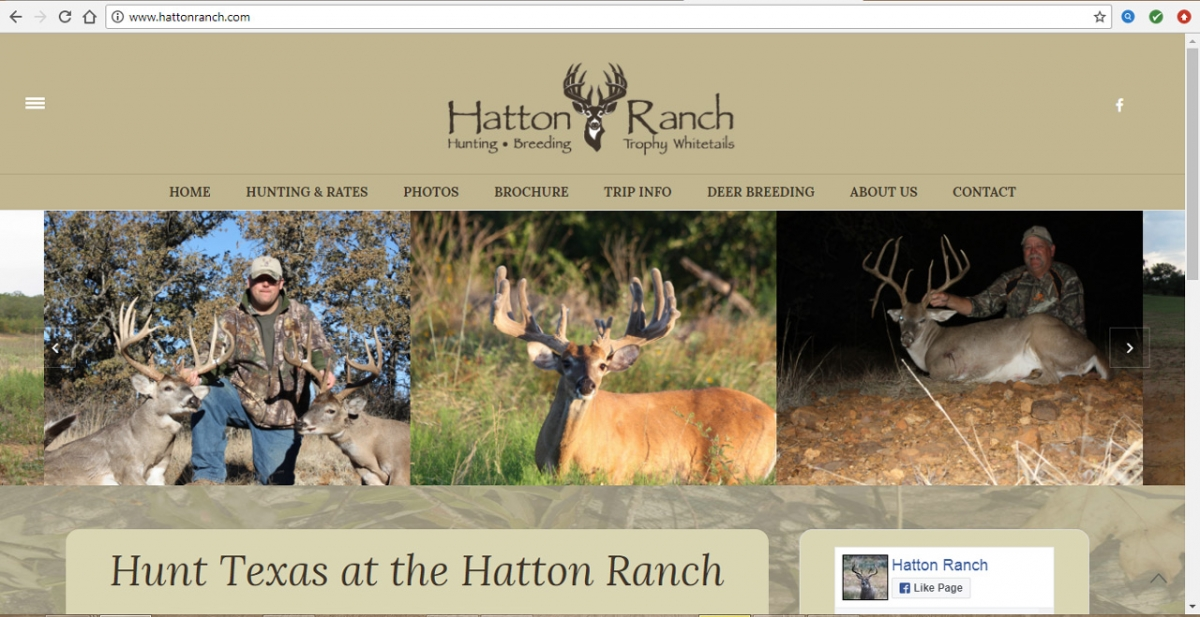 Allen, Texas Hunting Web Design