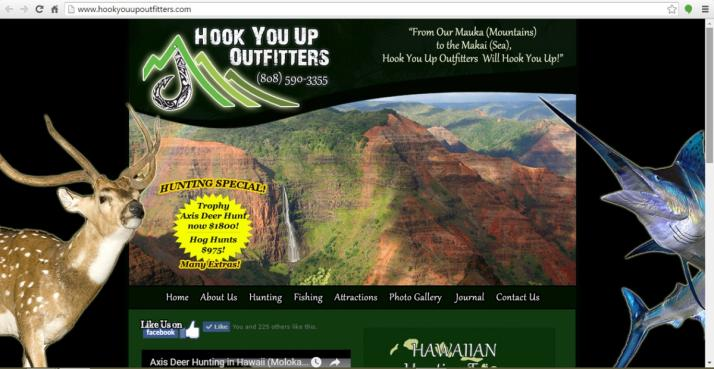 Hawaii Hunting Web Design