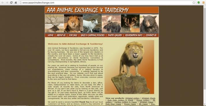 Morgantown, Indiana Taxidermy Web Design