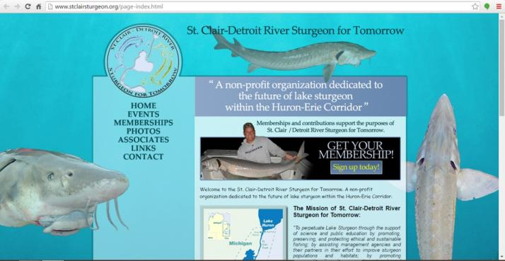 Mount Clemens, Michigan Fishing Web Design