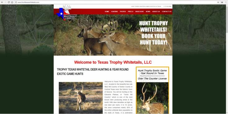Sonora, Texas Website Design