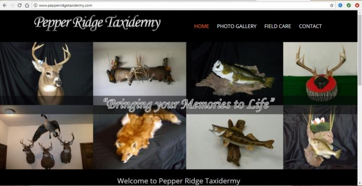 Bloomington, Illinois Taxidermy Web Design